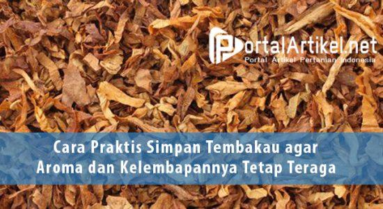Cara Praktis Simpan Tembakau agar Aroma dan Kelembapannya Tetap Teraga